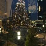 クリスマスの雰囲気がいっぱい☆.。.:☆*♡
