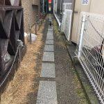 猫の細道(=^・^=)