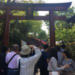 今年も行ってきました根津神社