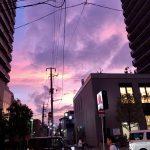 紫色の夕焼け