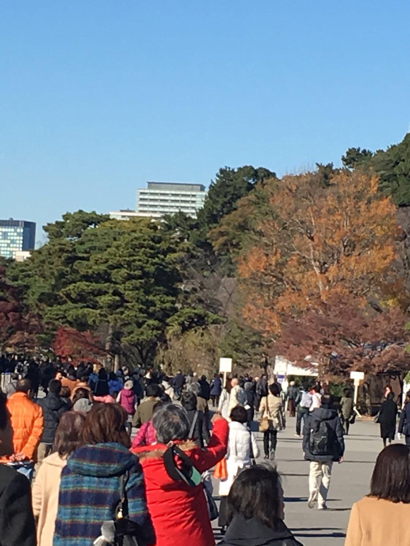秋季皇居乾通り一般公開へ行ってきました